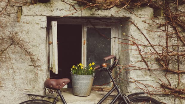 spring, health