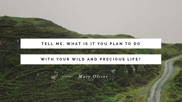 DD_2MaryOliver