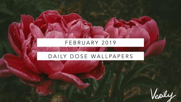 daily dose wallpaper cover feb