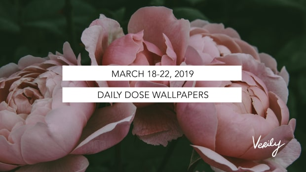 MARCH 18-22 2019Artboard 1@3x