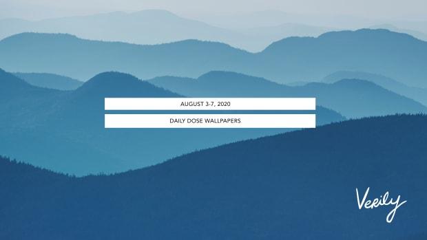daily dose header 8_3