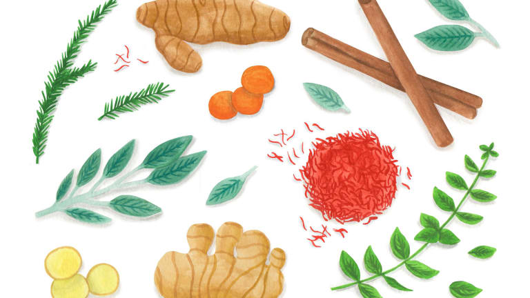 Seven Herbs and Spices with Nutritional Superpowers
