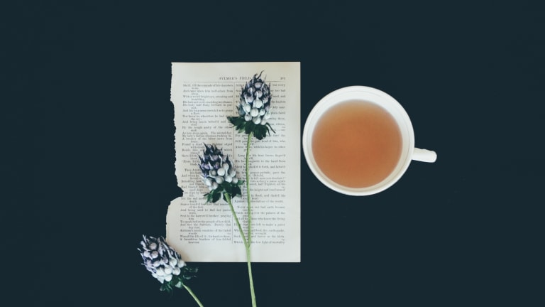 Winter Survival Guide: 5 Cozy Winter Reads (and Teas to Match!)