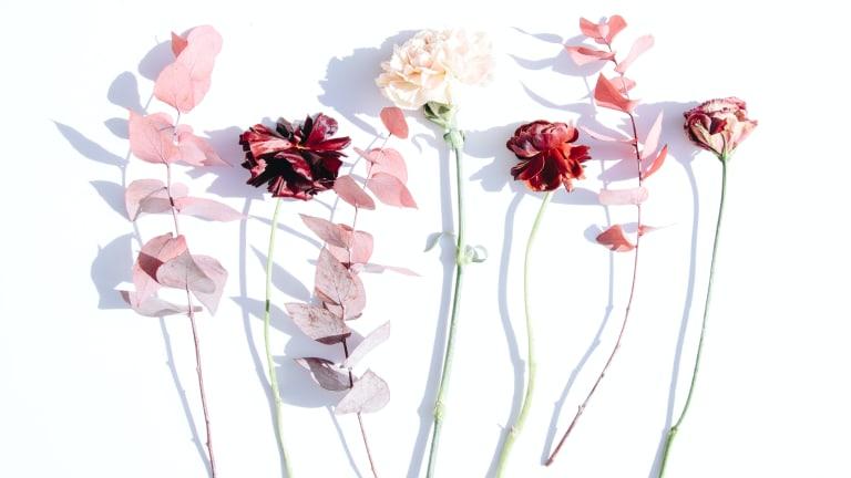 Reimagining Valentine's Day: Platonic Celebration