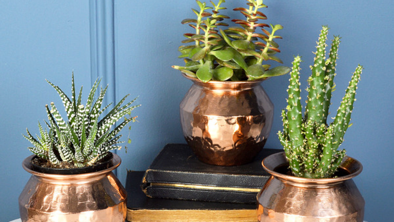 5 Things Every New Apartment Needs to Feel Like Home