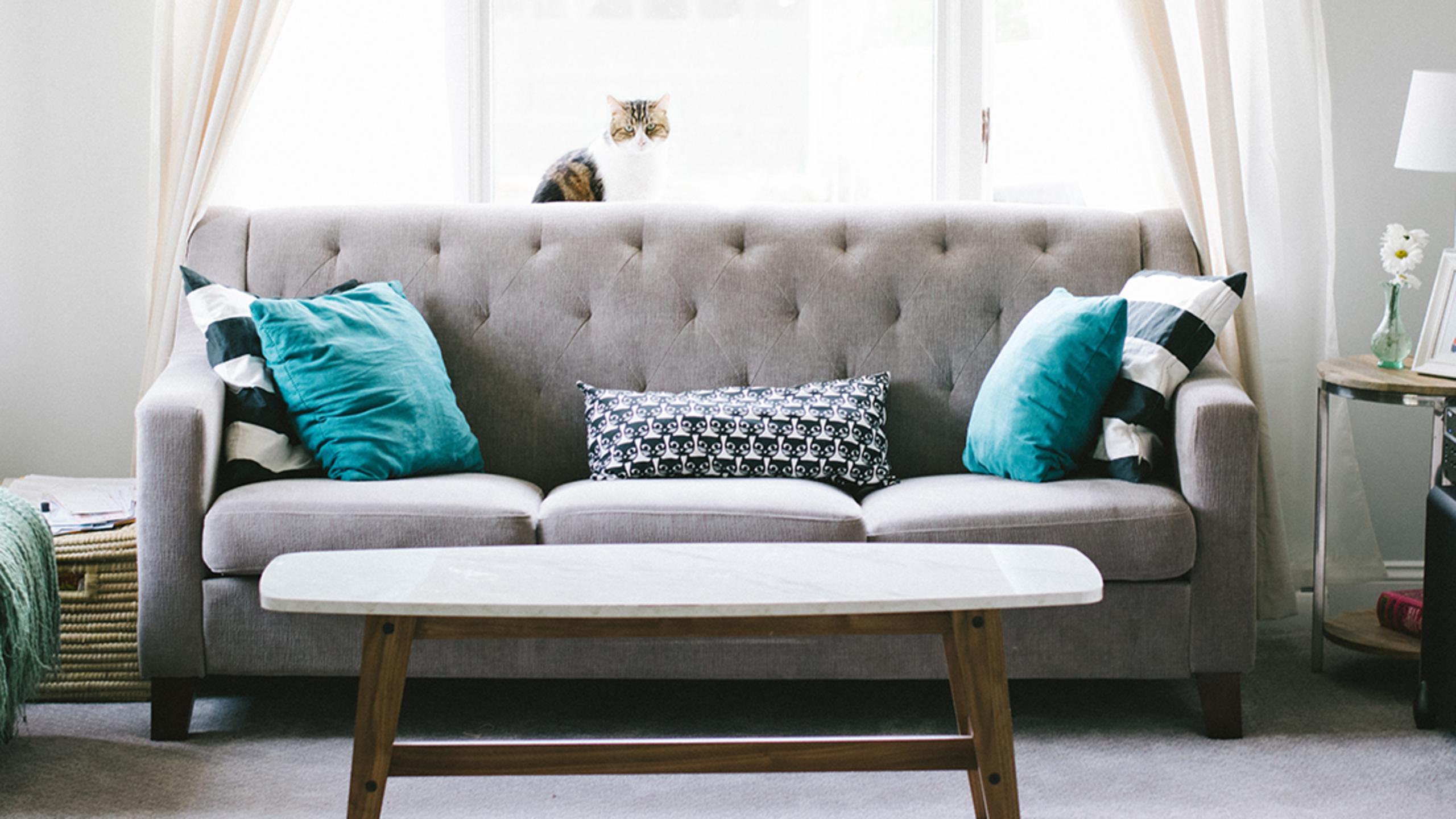 Interior Designer Secrets on How to Shop Craigslist for Home Decor ...