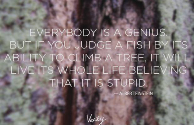 Verily-DD-Einstein-less-saturated