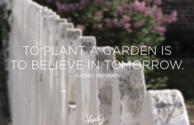 Verily-DD-Hepburn-Oct-22-blurred-desat