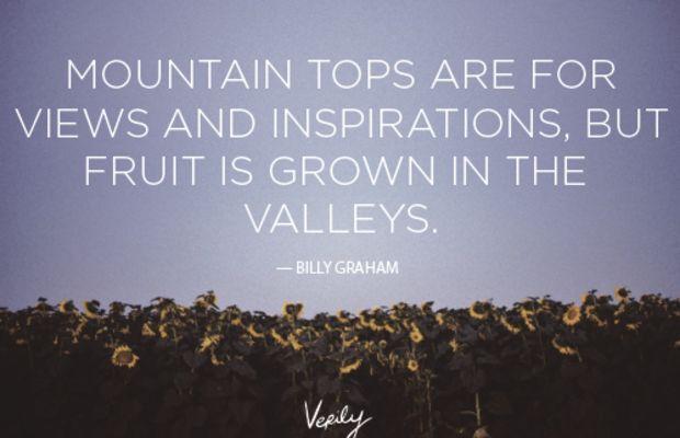 Verily-DD-Graham-Oct-30-for-blog-2