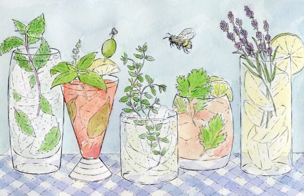 5 Easy-to-Grow Herbs for Fresh Spring Cocktails
