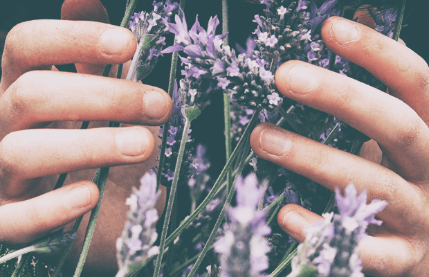 How to Use Essential Oils For Menstrual Cramps, Acne and More