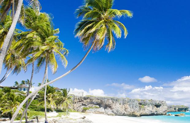 Barbados.org