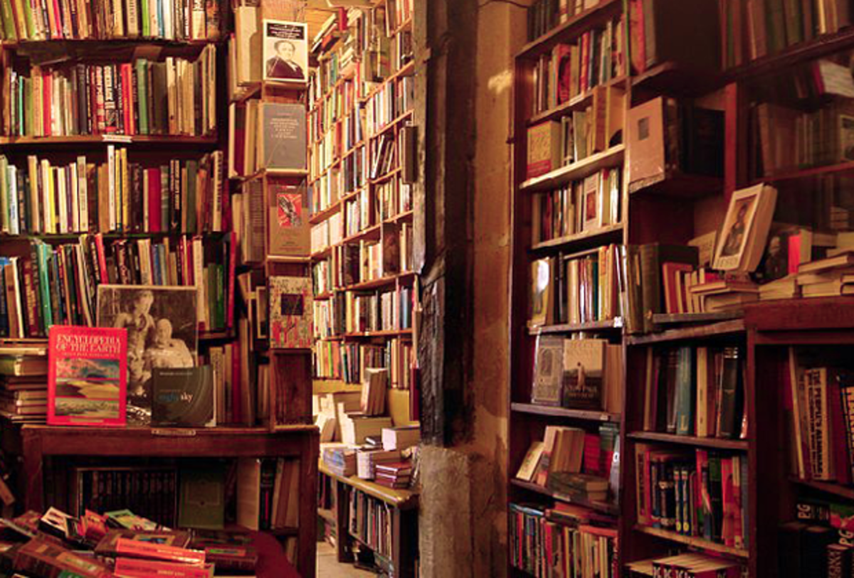 The famed Shakespeare & Co. where you can stay libre among les livres