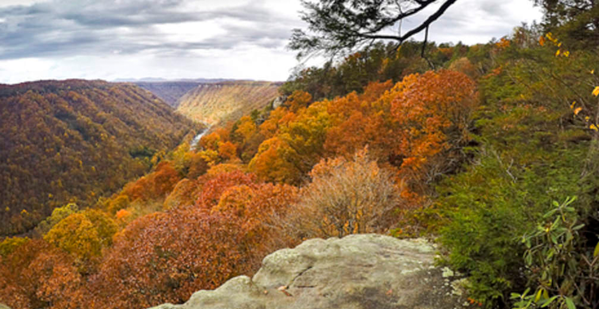 92717_Kanawha State Forest_1200x620_v1